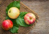 10 pārtikas produkti, kurus varat ēst arī naktī, nebaidoties no liekā svara