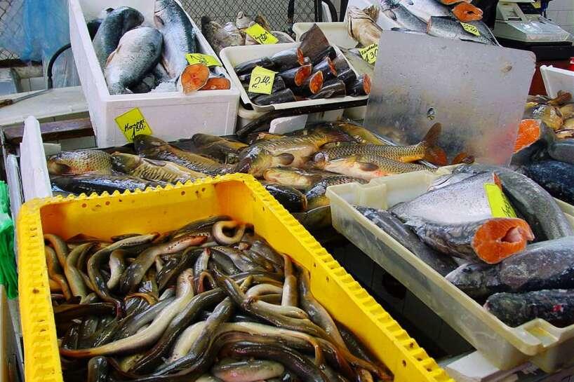 Vērtīgas zivis
