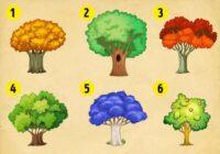 Izvēlies koku un uzzini, kādas izmaiņas notiks tavā rāmajā dzīvē. Testa efektivitāte – 78%