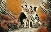Trīs zodiaka zīmes, kurām parasti ir visīstākie un patiesākie draugi
