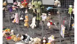 Atklāj kas patiesībā noticis ar mīkstajām rotaļlietām, kuras pie valdības ēkas nolika protestētāji